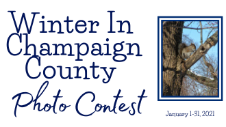 Winter in Champaign County Photo Contest